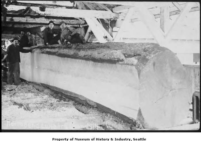 Big_log_at_North_Bend_Lumber_and_Sawmill_ca_1913
